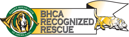 BHCA Recognized Rescue